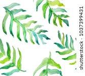 watercolor hand drawn summer... | Shutterstock . vector #1037399431
