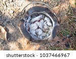 top view of old clay stove for... | Shutterstock . vector #1037466967