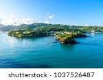 tropical coast on the caribbean ... | Shutterstock . vector #1037526487
