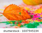 holi powder used to celebrate... | Shutterstock . vector #1037545234