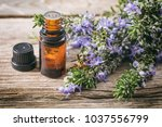 rosemary essential oil and... | Shutterstock . vector #1037556799