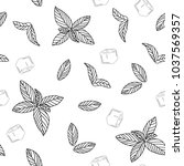 mint leaves with ice vector... | Shutterstock .eps vector #1037569357