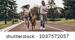 Stock photo nice day in park full length of beautiful young couple running with their dog while spending time 1037572057