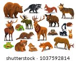 Vector Set Of Wild Forest...