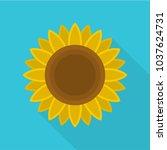 ripe sunflower icon. flat... | Shutterstock .eps vector #1037624731