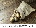lot of young potatoes in a... | Shutterstock . vector #1037701411