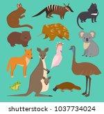 australian wild vector animals... | Shutterstock .eps vector #1037734024