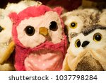 handmade fabric colorful owl... | Shutterstock . vector #1037798284