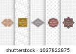 set of art deco seamless... | Shutterstock .eps vector #1037822875
