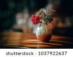 close up and selective focus... | Shutterstock . vector #1037922637