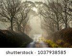 beautiful british countryside... | Shutterstock . vector #1037938585