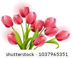 red tulip painting | Shutterstock .eps vector #1037965351