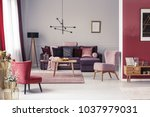 pink and red armchair in warm... | Shutterstock . vector #1037979031