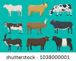 vector bulls and cows farm... | Shutterstock .eps vector #1038000001