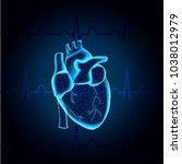polygonal human heart in low... | Shutterstock .eps vector #1038012979