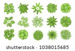 trees top view. different... | Shutterstock .eps vector #1038015685