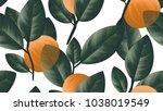 seamless pattern  orange fruit...   Shutterstock .eps vector #1038019549