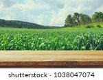 empty rustic table in front of... | Shutterstock . vector #1038047074