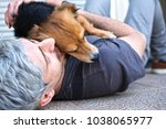 Stock photo love of a person to a dog 1038065977