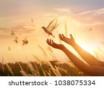 Stock photo woman praying and free bird enjoying nature on sunset background hope concept 1038075334