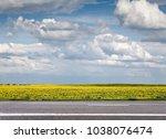 field of sunflowers and asphalt ... | Shutterstock . vector #1038076474