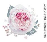 watercolor pink roses... | Shutterstock . vector #1038145939