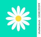 daisy chamomile vector icon | Shutterstock .eps vector #1038155599