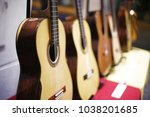 collection of acoustic guitars   Shutterstock . vector #1038201685