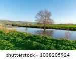 agamon hula   israel  | Shutterstock . vector #1038205924