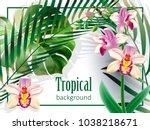 realistic detailed illustration ... | Shutterstock .eps vector #1038218671