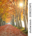 nice and colorful autumnal scene | Shutterstock . vector #1038225691