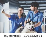 vet doctors with dog are... | Shutterstock . vector #1038232531
