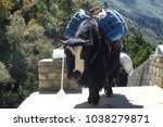 group of yaks over a suspension ... | Shutterstock . vector #1038279871