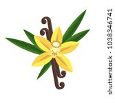 vanilla flower with stitch and...   Shutterstock .eps vector #1038346741