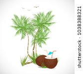 illustration of a coconut drink ... | Shutterstock .eps vector #1038388321