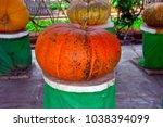 pick the pumpkin | Shutterstock . vector #1038394099