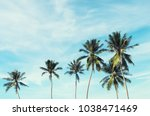 copy space of silhouette... | Shutterstock . vector #1038471469