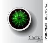 cactus top view | Shutterstock .eps vector #1038492769