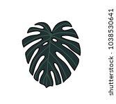 monstera leaf doodle icon | Shutterstock .eps vector #1038530641