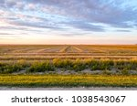 Farm in Saskatchewan, Canada Farm field with even rows of mown grass, lush purple clouds in the sky above the horizon