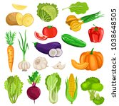 vegetables isolated on white... | Shutterstock .eps vector #1038648505