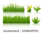 green grass set. 3d vector... | Shutterstock .eps vector #1038649591