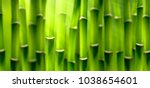 Blurred Bamboo Forest...