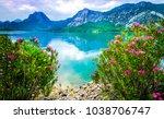 Summer Mountain Lake Flower...