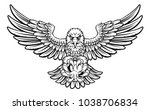 an eagle angry animal sports...   Shutterstock . vector #1038706834
