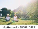 yoga at park. senior family... | Shutterstock . vector #1038715375