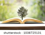 a book with trees sprouting in... | Shutterstock . vector #1038725131