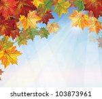 vector of autumnal leaves on... | Shutterstock .eps vector #103873961