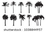 tropical coconut palm ... | Shutterstock .eps vector #1038844957