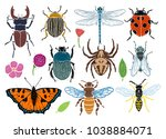 insect  flower collection ... | Shutterstock .eps vector #1038884071